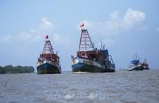 Вьетнам исправляет незаконный лов рыбы в чужих водах