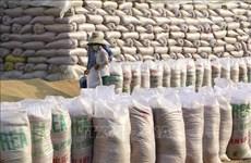 136.000 тонн риса выделено районам, пораженным пандемией