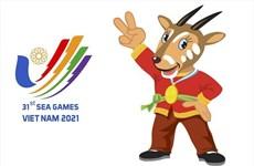 Федерация SEA Games обновила план проведения SEA Games 31