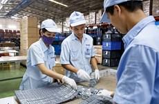 CIEM: Частный сектор играет все более важную роль в экономике Вьетнама