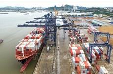 Вьетнамские порты вошли в топ-50 эффективных морских контейнерных портов