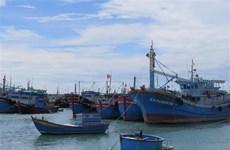 Предприятия по производству морепродуктов обязуются бороться с ННН-промыслом