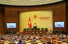 2-я рабочая неделя онлайн 2-й сессии Национального собрания 15-го созыва: уделять внимание законотворческой работе