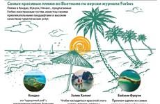 Самые красивые пляжи во Вьетнаме по версии журнала Forbes