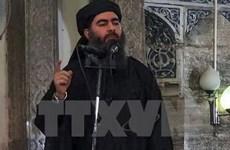 Стало известно о ликвидации лидера «Исламского государства»