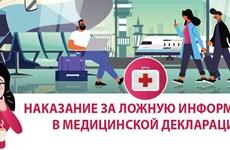 Наказание за ложную информацию в медицинской декларации