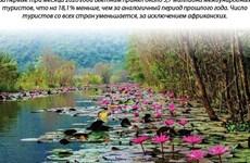 Количество иностранных туристов во Вьетнаме в I квартале снизилось на 18,1%