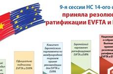 9-я сессии Национального собрания 14-ого созыва приняла резолюцию о ратификации EVFTA и EVIPA