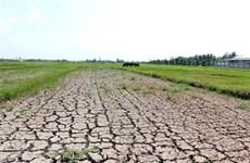 План направлен на улучшение адаптации Вьетнама к изменению климата