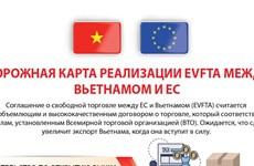 План реализации EVFTA между Вьетнамом и Европейским Союзом