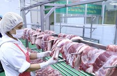 Кабмин ищет способы стабилизировать цены на свинину