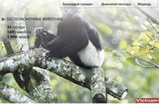 Национальный парк Кукфыонг