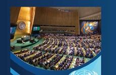Вьетнам председательствует на дускуссии высокого уровня в качестве председателя СБ ООН
