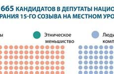 Сруктура 665 кандидатов в депутаты Национального собрания 15-го созыва на местном уровне
