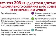 Структура 203 кандидатов в депутаты Национального собрания 15-го созыва на центральном уровне