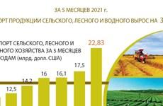Экспорт продукции сельского, лесного и водного хозяйства вырос более чем на 30%
