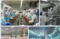 Экспорт Шокчанга вырос на 19% за 8 месяцев