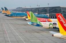 CAAV предлагает меры по возобновлению внутренних рейсов на фоне COVID-19