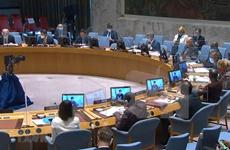 Вьетнам призывает к миру и стабильности на Голанских высотах