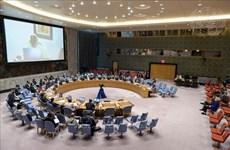 Вьетнам призывает к усилиям по борьбе с незаконной торговлей стрелковым оружием и легкими вооружениями