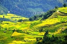 Нгайтхаутхыонг - самая высокая деревня во Вьетнаме