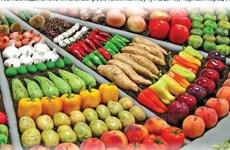 За 9 месяцев 2021 г. экспорт основных сельскохозяйственных продуктов резко увеличился