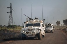 Вьетнам приветствует одностороннее прекращение огня правительством Центральной Африки