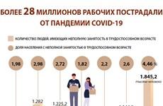 Более 28 миллионов рабочих пострадали от пандемии COVID-19