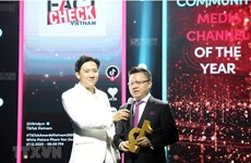 Церемония вручения наград TikTok Awards Việt Nam 2020