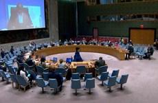 Вьетнам обещает продолжить участие в миссии ООН в Южном Судане