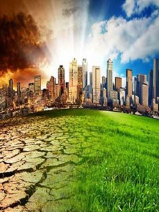 Борьба с изменением климата – Вьетнам вдохновляет страны мира