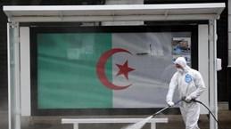 Граждане Вьетнама в Алжире призваны строго соблюдать антипандемические правила