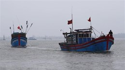 Вьетнам вручил ноту протеста Китаю в связи c затонувшим рыболовным судном