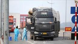 Открытие пограничного пункта пропуска Монгкай способствует возобновлению экспорта в Китай