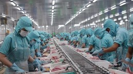 Японская газета: EVFTA поможет экономическому росту Вьетнама после эпидемии