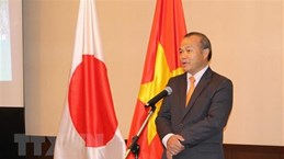 Посол: Вьетнам и Япония тесно сотрудничают в борьбе с COVID-19