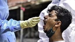В Индии выявили 14,8 тысячи новых случаев COVID-19