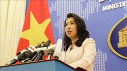 Представитель МИД: Вьетнам возражает против военных учений Китая в районе Хоангша