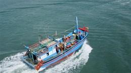 Представитель МИД: АСЕАН и Китай активизируют переговоры по COC