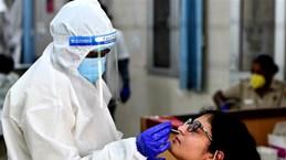 Индия обошла Россию по общему числу заболевших COVID-19
