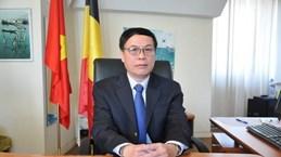 Бельгийские фирмы в курсе деловых возможностей во Вьетнаме
