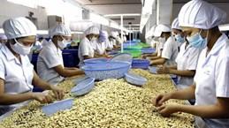 Оборот основной сельскохозяйственной продукции значительно снизился
