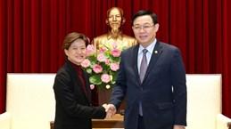 Сингапур использует свои сильные стороны для поддержки Ханоя