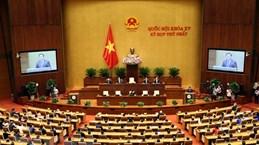 Первая сессия Национального собрания 15-го созыва выполнила всю повестку дня при сокращении времени заседаний