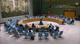 СБ ООН: Вьетнам высоко ценит вклад ЮНАМИД