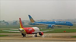 CAAV предлагает план возобновления внутренних рейсов