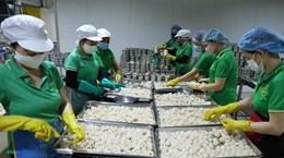 Экспорт фруктов и овощей снизился более чем на 12% за первые 7 месяцев