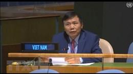 Вьетнам призывает стороны в Центральной Африке соблюдать мирное соглашение