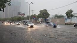 Город Хошимин планирует адаптироваться к изменению климата