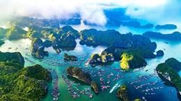 Вьетнам и другие страны усиливают борьбу с загрязнением океана